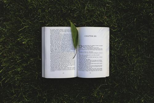 book-791765_1280