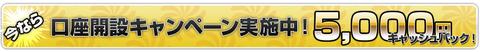 fxプライム5000円キャッシュバック1