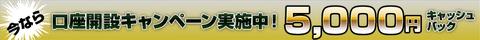fxプライム5000円キャッシュバック