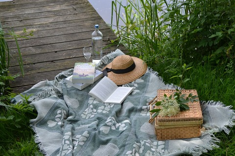 picnic-2171695_1280 (1)