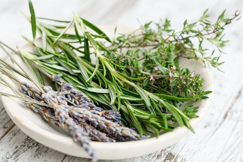 herbs-2523119_1280 (1)