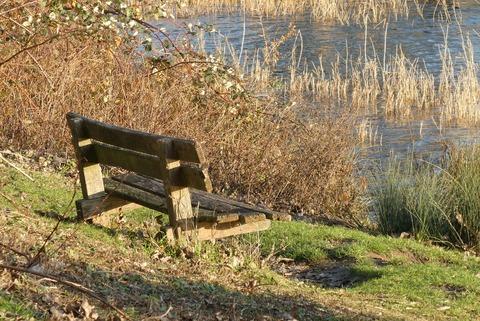 bench-3894959_1280 (1)