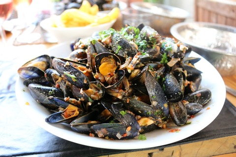mussels-2114006_1280 (1)