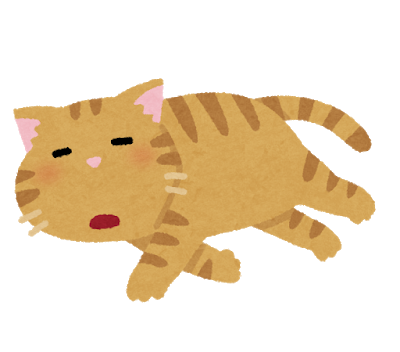 pet_darui_cat (3)