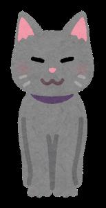 animal_cat_front