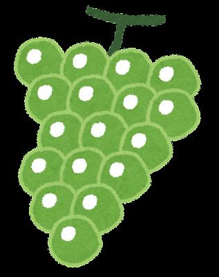 fruit_masukatto