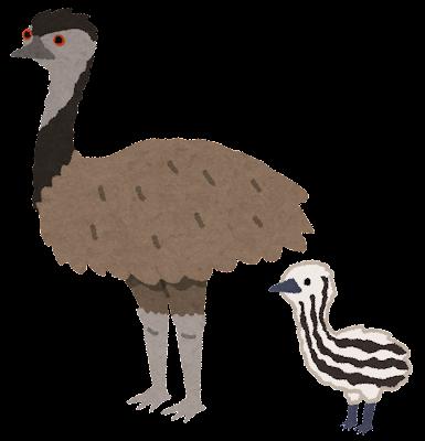 bird_emu