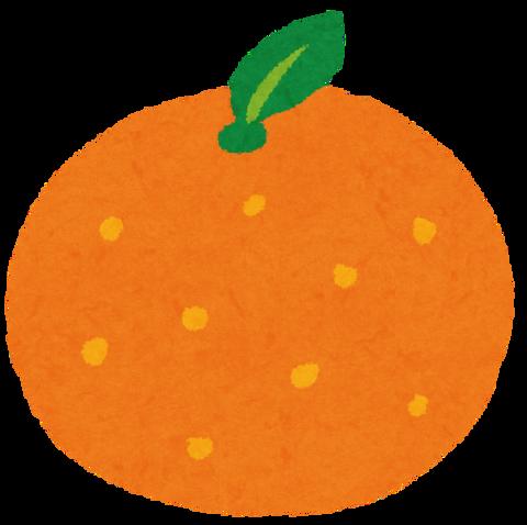 fruit_orange