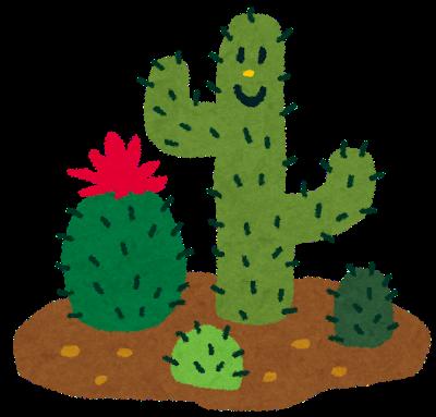 plant_cactus