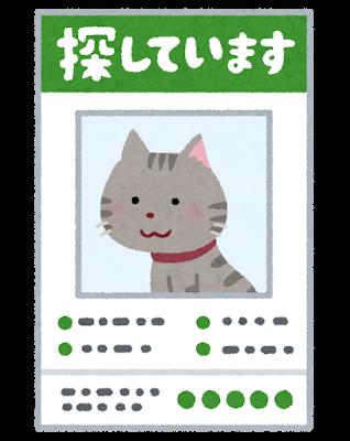 yukuefumei_pet_cat
