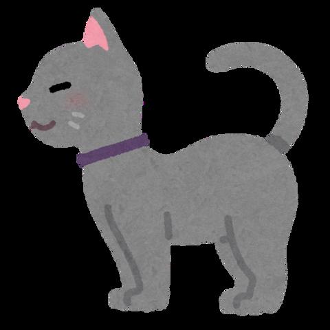 animal_cat_side (1)