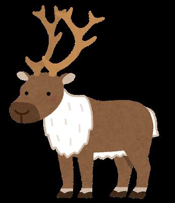 animal_moose