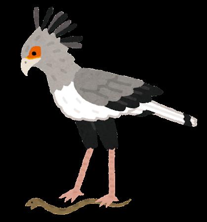 bird_hebikuiwashi
