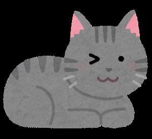 cat_wink_gray
