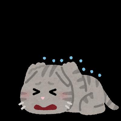 pet_ofuro_kirai_cat