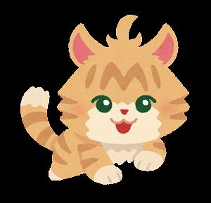 cat_nekoko (2)