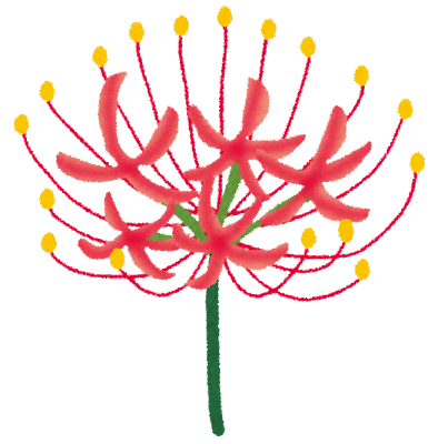 flower_higanbana (1)