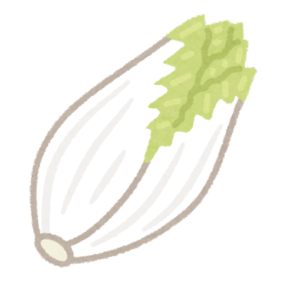 vegetable_chikori