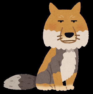 animal_sunagitsune