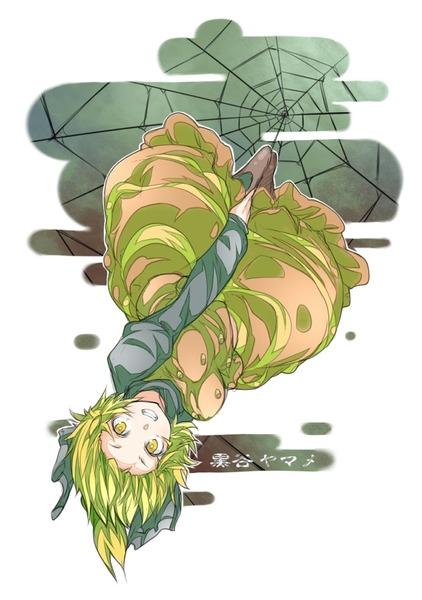 ヤマメ蜘蛛の巣2-05