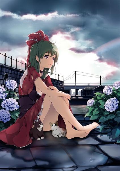 鍵山雛と花-2
