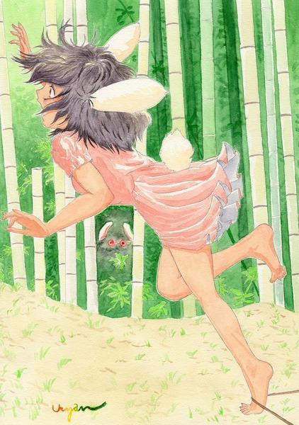 因幡てゐと竹林-03
