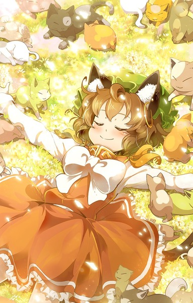 橙と猫-12
