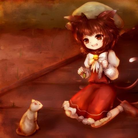 橙と猫-11