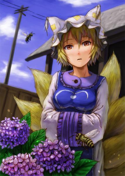 東方紫陽花2-08