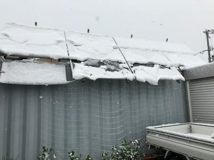 1228PV積雪