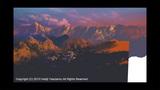 New Way Home 山ブラシ アップ版3