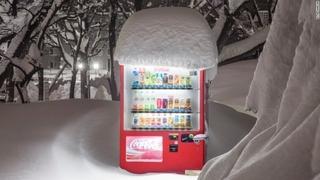 【アート】日本の孤独な自動販売機 その「美」を写真に捉える のサムネイル画像