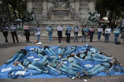 【動物保護】「魚を苦しめないで」 菜食主義団体がデモwwwwwwwwwwwwwwのサムネイル画像