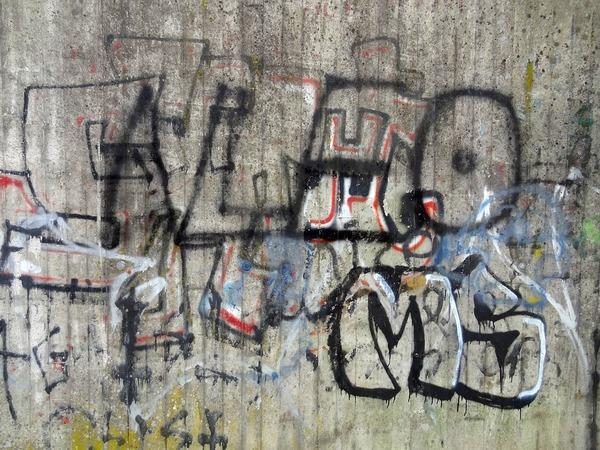 【悲報】壁にスプレーで落書きをした、台湾出身大学生を逮捕・・・のサムネイル画像