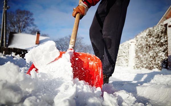 【青森】雪かき1回で100円分のポイントを付与するボランティア制度が物議をかもすのサムネイル画像