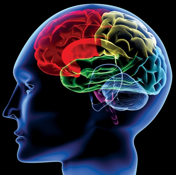 【朗報】週1回の性交渉、脳の老化防止に有効と判明wwwwwwwwwwwwwwwwwwwwwのサムネイル画像