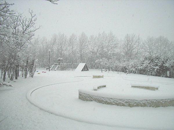 【速報】ちょwwwwwwww関東で雪wwwwwwwwwwwwwwwのサムネイル画像