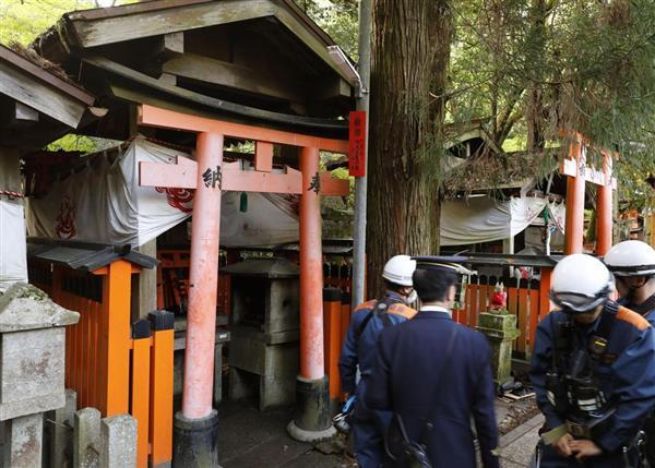 【悲報】カラス、神社に放火してしまうのサムネイル画像