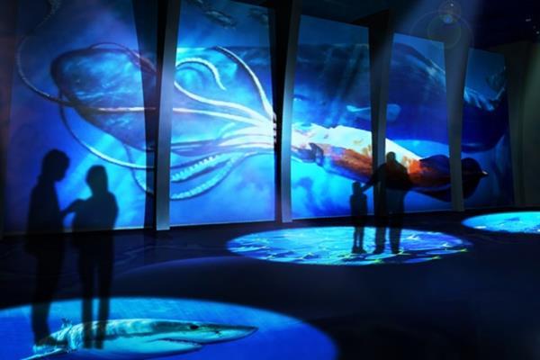 【DMM】最新映像技術を駆使した世界初の「水族館」を開業へwwwwwwwwwwwwのサムネイル画像