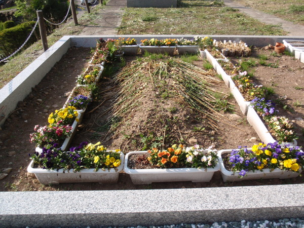 土葬の文化が続いてきたアメリカで、火葬が主流になりつつある模様のサムネイル画像
