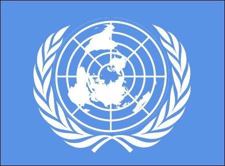 国連 「共謀罪、場合によっては永続的に対処するしかない。」のサムネイル画像