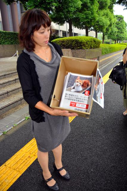 「猫殺した容疑者に懲役刑を」3万7千人分の署名集まるwwwwwwwwwwwのサムネイル画像