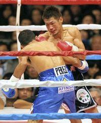 WBCバンダム級:長谷川穂積、同級9位のアルバロ・ペレスに4階TKO勝ちで10連続防衛達成!のサムネイル画像