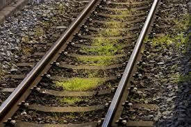 【驚愕】酔っ払った28歳男性、線路を歩く → 当然やってきた電車に轢かれた結果・・・のサムネイル画像