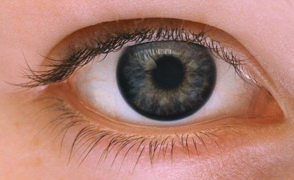 「目をつぶしてやろうと思った」のサムネイル画像
