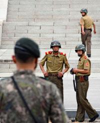 【驚愕】亡命北朝鮮兵、腸から最大27cm、数十匹の寄生虫が見つかるwwwwwww のサムネイル画像