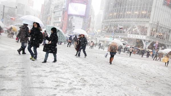 【大雪】関東の雪、ほぼやむ。なお今週氷点下の冷え込みのサムネイル画像