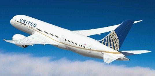 ユナイテッド航空 「だめだめ、マン筋見えちゃってんじゃんその幼女 レギンスの上に何か履かせて」のサムネイル画像