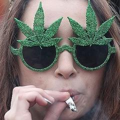 【衝撃】大麻入りクリスマスカレンダーに注文殺到wwwwwwwwwwwのサムネイル画像