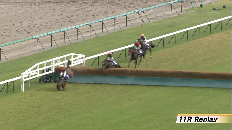 【競馬】障害レース中に馬が転倒し即死のサムネイル画像